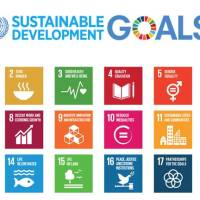 Importance of using the SDGs as a universal framework for development